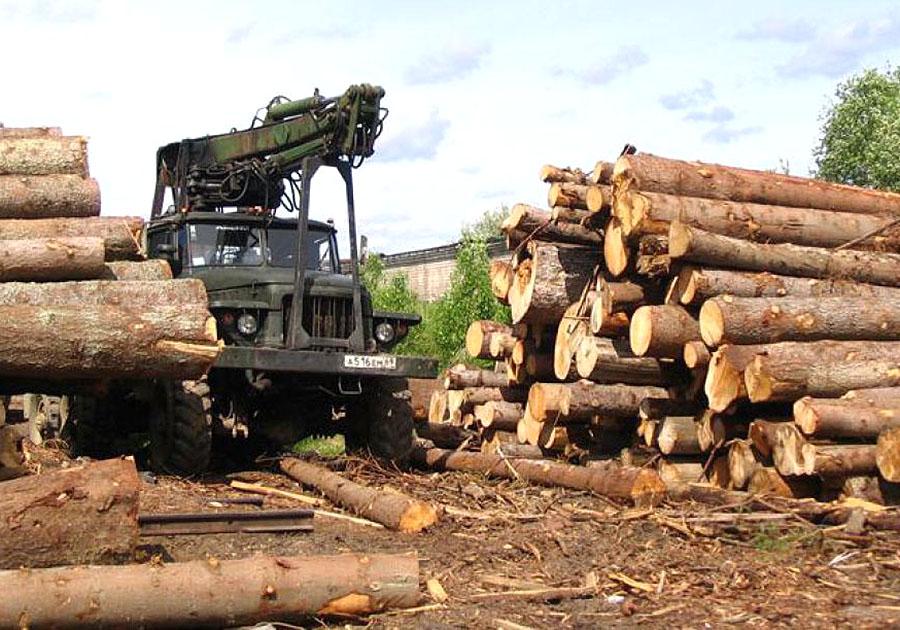 ВоВладимирской области возрождена деятельность деревообрабатывающего комбината