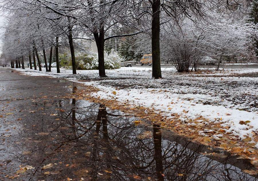любителей всего картинка первого снега разводят