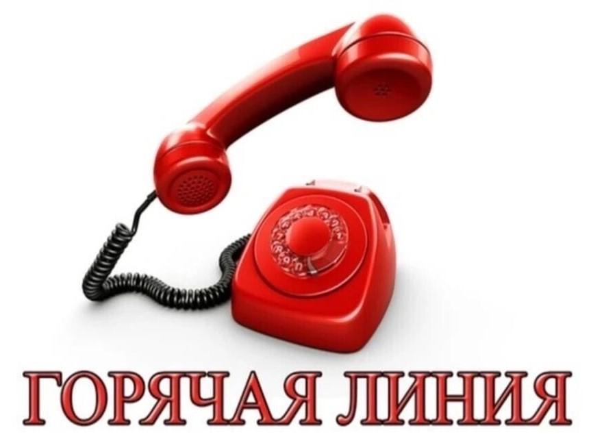 Во Владимирской области появилась «горячая линия» по ковиду