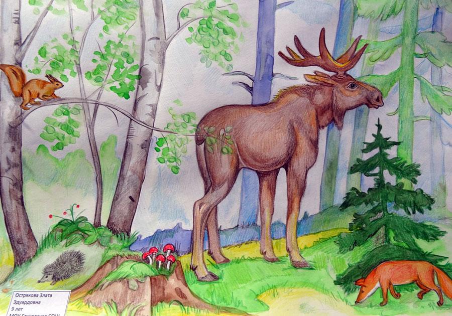 Природа с животными картинки для срисовки